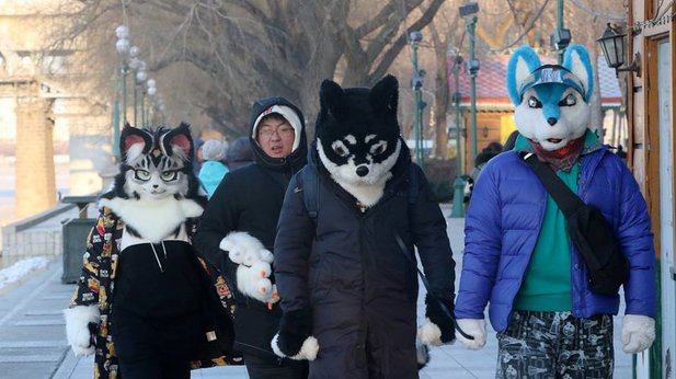 China's largest newspaper doesn't know what furries are and we won't tell them